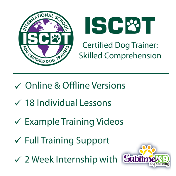 online dog training certification course