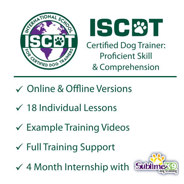 certified dog trainer internship